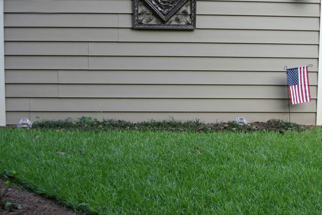 green centipede grass brown medallion on vinyl siding bare natural bed area garden yard