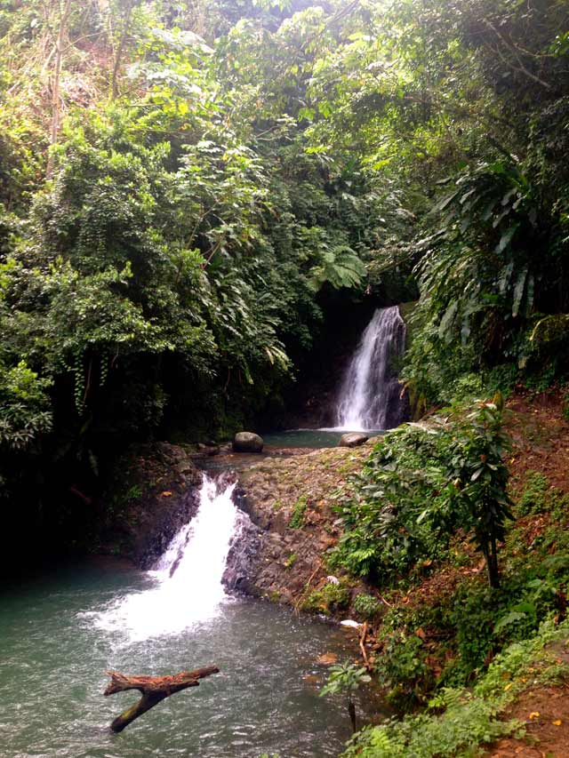 double waterfall in middle of rainforest on island of Grenada