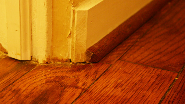 Stain Touched Up on Wood Shoe Molding